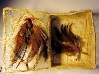 Feathered Fantasies ($25)